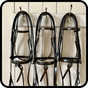 Classic brown bridles