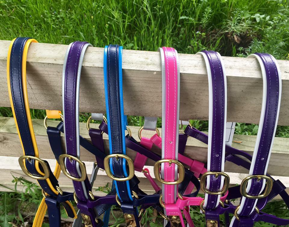 Double coloured halters